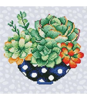 Diamond Art Pot de Succulentes