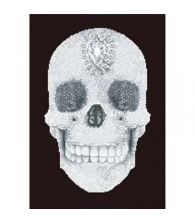 Diamond Dotz Crâne de Cristal
