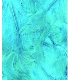 Plumes Turquoises 3g Artémio