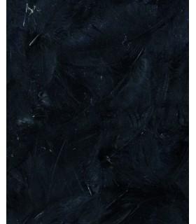Plumes noires 3g Artemio